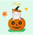 happy kawaii kitten sitting in a halloween vector image