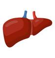 liver icon medicine and human anatomy symbol vector image