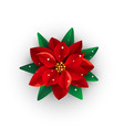 merry christmas bouquet poinsettia isolated on vector image