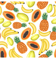tropical pattern vector image vector image