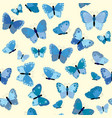blue butterflies seamless background vector image vector image