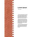 Brick wall identity vector image