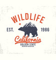 california t-shirt design with mountains and bear vector image vector image