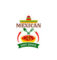 mexican hot spice cuisine design vector image