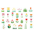 nature flora trees flowers plants set vector image vector image