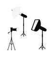 professional photo light equipment set vector image vector image