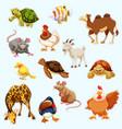 sticker design with wild animals vector image