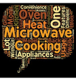 Two In One In Microwave Oven text background vector image vector image