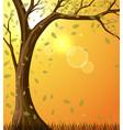 autumn yellow-orange background vector image vector image