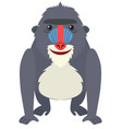 baboon with happy face vector image vector image