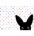 black rabbit colorful dots star background vector image vector image