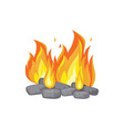 burning bonfire with charcoal cartoon icon vector image vector image
