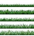 green grass border set vector image