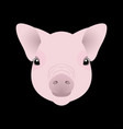 pig piglet face nice style chinese new year vector image vector image