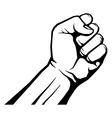 Raised fist isolated on white vector image