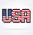 usa flag text vector image