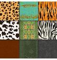 animal skins pattern seamless animalistic vector image