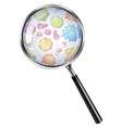 Bacteria through magnifying glass vector image vector image
