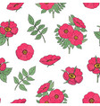 botanical seamless pattern with pink dog rose vector image vector image