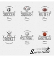 Cricket volleyball football basketball squash vector image vector image