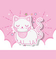 cute cat animal in the clouds with stars vector image vector image
