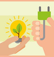 hands with bulb and plug energy ecology vector image