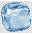 transparent ice cube vector image vector image