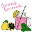 hand drawn bottle with lemonade lemons and mint vector image