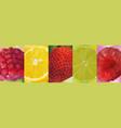 3d realistic fruit pomegranate lemon lime vector image vector image