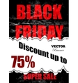 Black Friday design pattern vector image