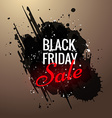 black friday sale advertisement design vector image vector image