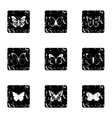 Creatures butterflies icons set grunge style vector image vector image
