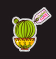 fashion patches brooches with cacti vector image vector image