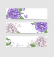 hydrangea floral banner template in watercolor vector image vector image