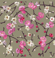 seamless pattern with blooming sakura branches vector image vector image