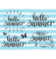 Hello summer hand lettering set vector image