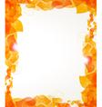 Orange petals frame vector image