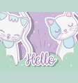 cute cats animals in the clouds with stars vector image vector image