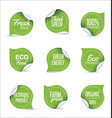 eco organic label tag collection vector image