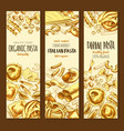 italian cuisine pasta and spaghetti sketch banner vector image vector image