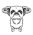 kawaii black dog all you need is love and dog vector image