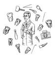 molar teeth enamel dental set instruments vector image