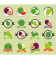 Set of various fresh fruit premium quality vector image vector image