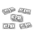 100 dollar banknotes bundles sketch icons vector image