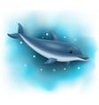 cartoon dolphin swimming in ocean vector image vector image