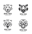 Set of the tiger heads Sport team mascot Design vector image vector image
