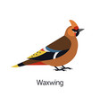 waxwing isolated on white background gorgeous vector image vector image