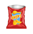 Open Chips Package vector image
