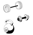 barbell and dumbbell on a white vector image vector image