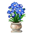 Bright blue flowers in beautiful ceramic pot vector image vector image
